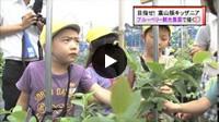 チューリップテレビ ニュース6(2014.7.18放送)