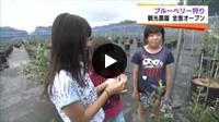 チューリップテレビ ニュース6(2015.6.24放送)