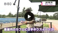 KNB ニュース every(2014.7.17放送)